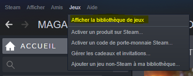 Bilbliotheque de jeu Steam